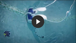 Why Polaris Pressure Pool Cleaners
